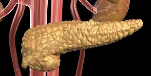 掌控糖尿病-胰岛移植手术治疗图