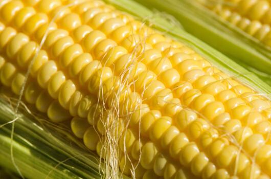 掌控糖尿病-玉米须对降糖有用吗配图