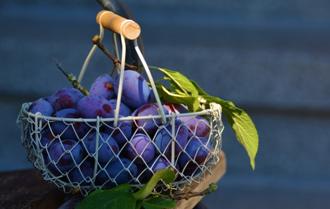 掌控糖尿病-糖尿病吃水果注意配图